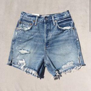 New AGOLDE Dee High Rise Denim Shorts Ricochet 25